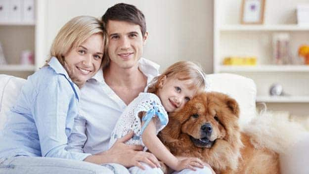 Wills & Trusts dog-young-family Direct Wills Barbican